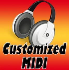 Custom Midi (Hindi)